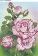 Схема для вышивки бисером на габардине Роза Кавказа