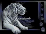 Схема вышивки бисером на габардине Тигр