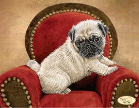 Схема вышивки бисером на атласе Мопс, , 95.00грн., ТА-358, Tela Artis (Тэла Артис), Собака символ 2018 года своими руками