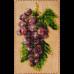 Органайзер с крышкой под вышивку бисером Виноград Волшебная страна FLZB-072