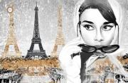 Схема для вышивки бисером на атласе Однажды в Париже