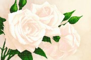 Рисунок на ткани для вышивки бисером Чайные розы