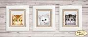 Схема вышивки бисером на атласе Коллекция миниатюр Котята