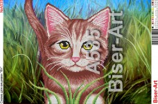 Схема вышивки бисером на габардине Котик в траве Biser-Art 30*40-А535