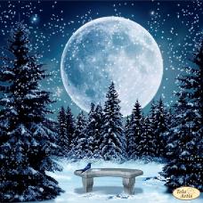 Схема вышивки бисером на атласе Луна Tela Artis (Тэла Артис) ТА-441