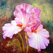 Набор для выкладки алмазной мозаикой Розовый ирис