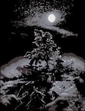 Схема вышивки бисером на атласе Темная ночь Эдельвейс А-2-54+ Атлас