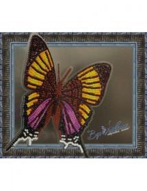 Набор для вышивки бисером на прозрачной основе Бабочка Марпезия Марселла, , 160.00грн., BGP-027, Вдохновение, Брошки для вышивки бисером