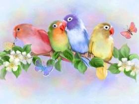 Набор для выкладки алмазной мозаикой Целующиеся попугаи