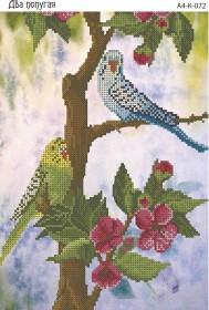 Схема для вышивки бисером на габардине Два попугая