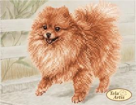 Схема вышивки бисером на атласе Малыш шпиц, , 55.00грн., ТМ-113, Tela Artis (Тэла Артис), Собака символ 2018 года своими руками