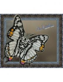 Набор для вышивки бисером на прозрачной основе Бабочка Харакс Нобилис, , 160.00грн., BGP-030, Вдохновение, Открытки, магниты