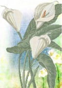 Схема вышивки бисером на габардине Белокрыльник