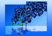 Схема для вышивки бисером на атласе Орхидеи Голубые (Диптих)
