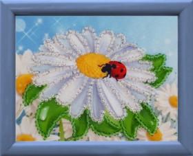 Схема для вышивки бисером Ромашка Баттерфляй (Butterfly) СМ022 - 12.00грн.