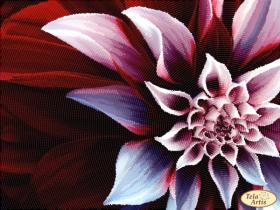 Схема для вишивання бісером на атласі Бордо Tela Artis (Тэла Артис) ТА-424 - 98.00грн.