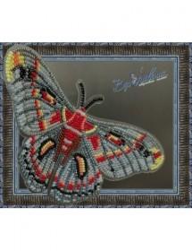 Набор для вышивки бисером на прозрачной основе Бабочка Гиалофора кекропия, , 160.00грн., BGP-026, Вдохновение, Брошки для вышивки бисером