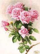 Схема вышивки бисером на атласе Английские розы