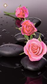 Схема вышивки бисером на атласе Дольче вита, , 300.00грн., ДСЛ-1002, Миледи, Цветы
