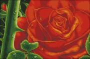 Схема вышивки бисером на атласе Роза
