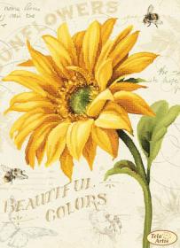 Схема для вышивки бисером на атласе Солнышко-1, , 95.00грн., ТА-393, Tela Artis (Тэла Артис), Цветы