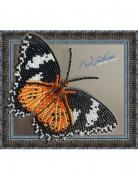 Набор для вышивки бисером на прозрачной основе Бабочка Цитозия Библс