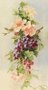Рисунок на ткани для вышивки бисером Букет с виноградом