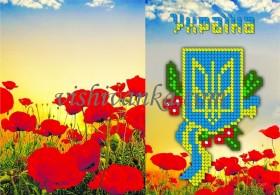 Схема для вышивки бисером на атласе Обложка для паспорта, , 43.00грн., БН-071 атлас, Вишиванка, Обложки на паспорта