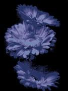 Схема вышивки бисером на габардине Цветы