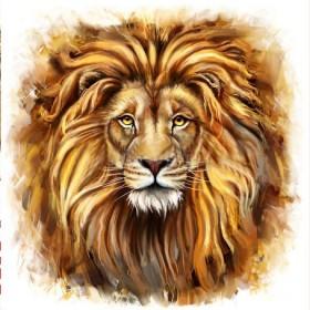 Набор для выкладки алмазной мозаикой Взгляд льва
