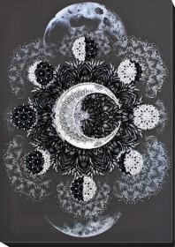 Набор для вышивки бисером Танец Селены Абрис Арт АВ-771 - 425.00грн.