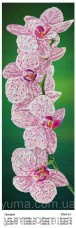 Схема вышивки бисером на атласе Панно ОРХИДЕЯ  Юма ЮМА-364-Р8