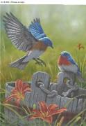 Схема для вышивки бисером на габардине Птицы в саду