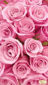 Схема для вишивання бісером на атласі Рожеві сни