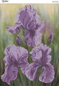 Схема для вышивки бисером на габардине Ирисы, , 70.00грн., А3-К-104, Acorns, Цветы