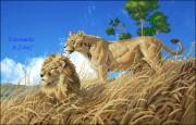 Схема вышивки бисером на габардине Лев и львица