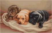 Набор для вышивки крестом Три собачки