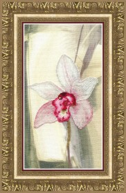 Набор для частичной вышивки крестом Розовая орхидея, , 256.00грн., РК-119, Чарiвна мить (Чаривна мить), Цветы