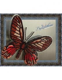 Набор для вышивки бисером на прозрачной основе Бабочка Eurytides Ariarathes Gayi, , 160.00грн., BGP-017, Вдохновение, Брошки для вышивки бисером