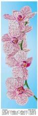 Схема вышивки бисером на атласе Панно ОРХИДЕЯ  Юма ЮМА-364-Р7