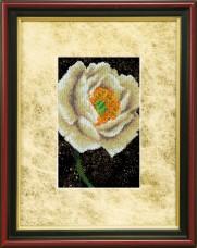 Набор для вышивки ювелирным бисером Пион Чарiвна мить (Чаривна мить) БЮ-508