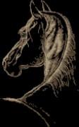 Схема вышивки бисером на атласе Конь
