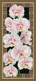 Набор для выкладки алмазной мозаикой Орхидеи, , 500.00грн., АТ3203, Art Solo, Цветы