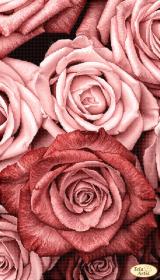 Схема для вишивания бисером на атласе Пудровые розы