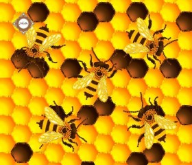 Пошитый клатч для вышивки бисером Золотые пчелки, , 430.00грн., КС-014, Миледи, Наборы для вышивки косметичек