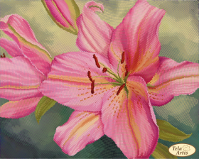 Схема для вышивки бисером на атласе Восточная лилия, , 95.00грн., ТА-385, Tela Artis (Тэла Артис), Цветы