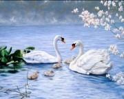 Набор для выкладки алмазной мозаикой Лебединая семья