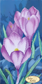 Схема вышивки бисером на атласе Садовые зарисовки. Крокусы, , 50.00грн., ТМ-126, Tela Artis (Тэла Артис), Цветы