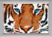 Рисунок на атласе для вышивки бисером Глаза тигра