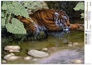 Рисунок на холсте для вышивки бисером Тигр у воды